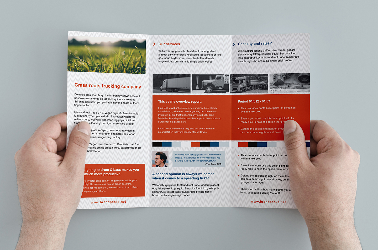 Free trifold brochure template freestack collection of for Adobe photoshop brochure templates